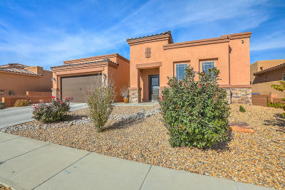 Albuquerque Single Family Home For Sale: 6375 Camino De Paz Road NW