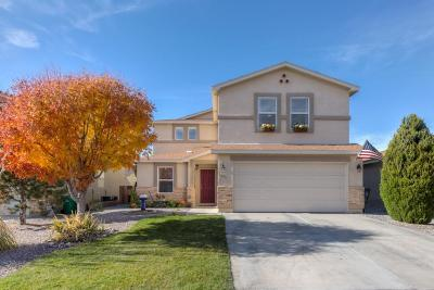 Rio Rancho Single Family Home For Sale: 1229 Maple Meadows Drive NE