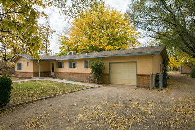 Albuquerque Single Family Home For Sale: 251 Willow Road NW