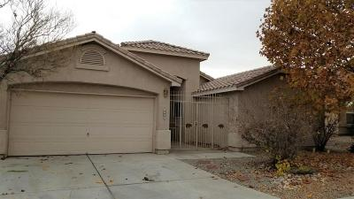 Albuquerque Single Family Home For Sale: 6008 Storyteller Road NW