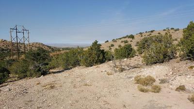 Placitas Residential Lots & Land For Sale: Camino De La Rosa Castillo