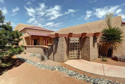 Rio Rancho Single Family Home For Sale: 2705 Lerma Road NE