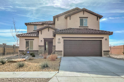 Albuquerque Single Family Home For Sale: 9501 Big Rock Drive NW