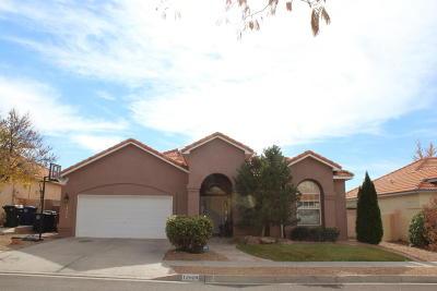 Albuquerque Single Family Home For Sale: 12024 Gazelle Place NE