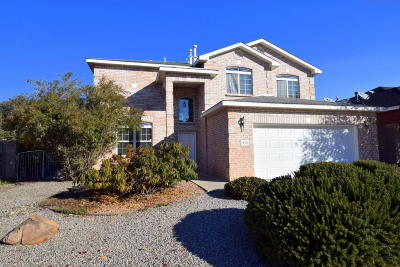 Albuquerque Single Family Home For Sale: 9701 Talea Court NE