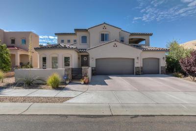 Albuquerque Single Family Home For Sale: 8112 Via Encantada NE