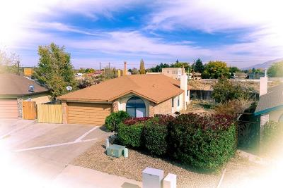 Albuquerque Single Family Home For Sale: 5404 Bogart Street NW