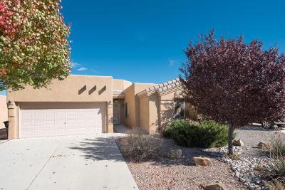 Albuquerque Single Family Home For Sale: 6820 Calle Santiago NE