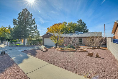 Albuquerque Single Family Home For Sale: 813 Eastridge Drive NE