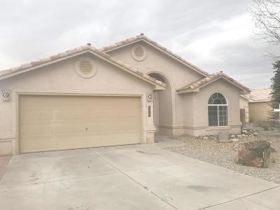 Albuquerque Single Family Home For Sale: 9709 Kokopelli Drive NW