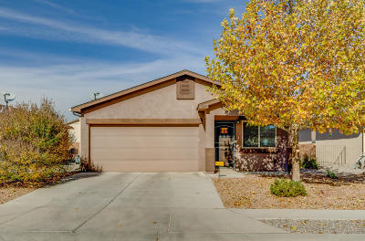 Albuquerque Single Family Home For Sale: 7001 Canyon Cliff Road NW