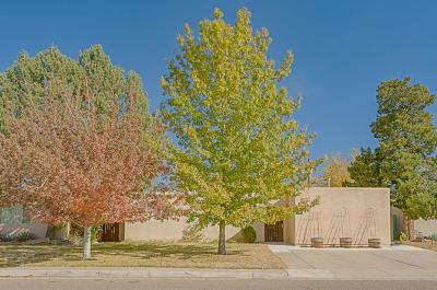 Albuquerque Single Family Home For Sale: 1844 Lester Drive NE