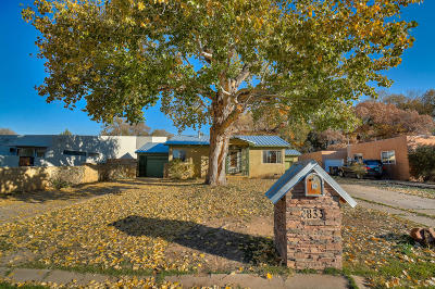 Albuquerque Single Family Home For Sale: 833 Floretta Drive NW