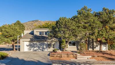 Albuquerque Single Family Home For Sale: 3608 Tewa Court NE