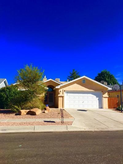 Albuquerque Single Family Home For Sale: 1500 Stoneway Drive NW