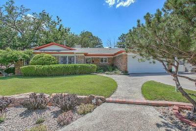 Albuquerque Single Family Home For Sale: 4501 Banff Drive NE