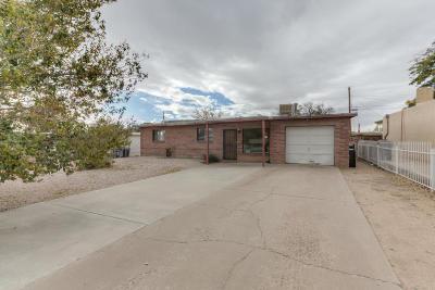 Albuquerque Single Family Home For Sale: 1205 Morris Street NE