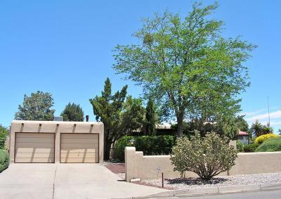 Albuquerque, Rio Rancho Single Family Home For Sale: 4603 Los Reyes Road SE