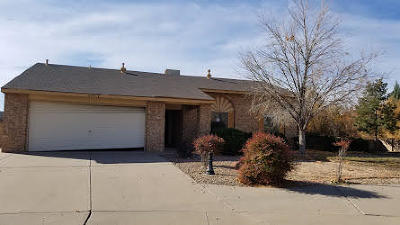 Rio Rancho Single Family Home For Sale: 6301 Beaver Court NE