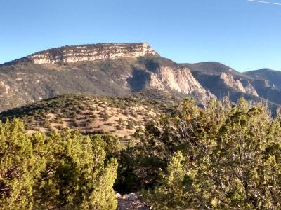 Placitas Residential Lots & Land For Sale: Nighthawk Canyon Road