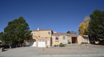 Albuquerque Single Family Home For Sale: 14001 Oak Butte Road NE
