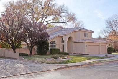 Albuquerque Single Family Home For Sale: 1634 Tierra Del Rio Drive NW