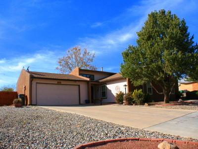 Albuquerque, Rio Rancho Single Family Home For Sale: 717 Casper Road SE