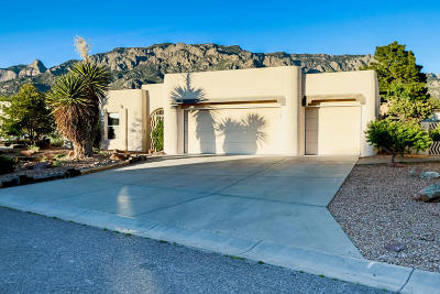 Sandia Heights Single Family Home For Sale: 8231 Raintree Drive NE