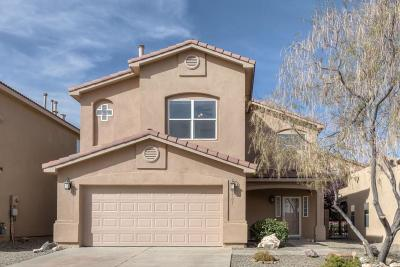 Albuquerque Single Family Home For Sale: 9301 Ashfall Place NW