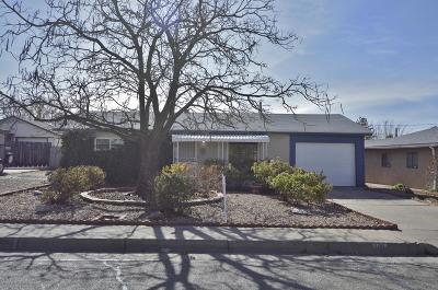 Albuquerque Single Family Home For Sale: 9018 Fairbanks Road NE