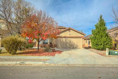 Rio Rancho Single Family Home For Sale: 641 Playful Meadows Drive NE