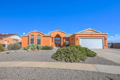 Rio Rancho Single Family Home For Sale: 6917 Gregory Court