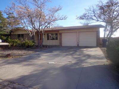Albuquerque Single Family Home For Sale: 13516 Auburn Avenue NE