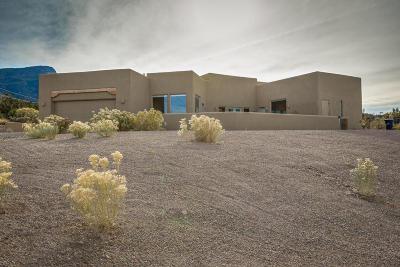 Placitas Single Family Home For Sale: 43 Camino Del Rincon Colorado