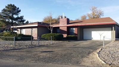 Albuquerque, Rio Rancho Single Family Home For Sale: 1755 Fran Place SE