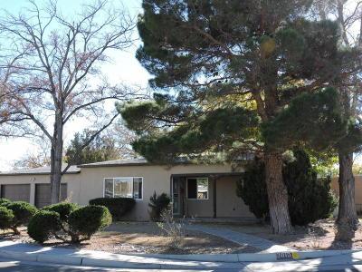 Albuquerque Single Family Home For Sale: 3810 Veranda Road NE