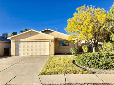 Rio Rancho Single Family Home For Sale: 3509 Morgan Meadows Drive NE