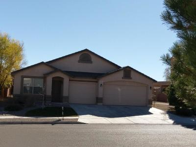 Albuquerque Single Family Home For Sale: 8020 Sand Springs Road NW