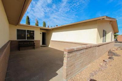 Albuquerque Single Family Home For Sale: 1617 Zena Lona Street NE