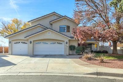 Albuquerque Single Family Home For Sale: 7905 Rosas Court NE