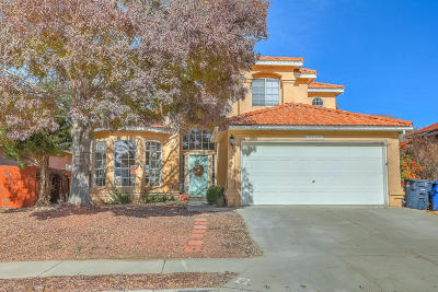 Albuquerque Single Family Home For Sale: 4805 Mesa Prieta Court NW