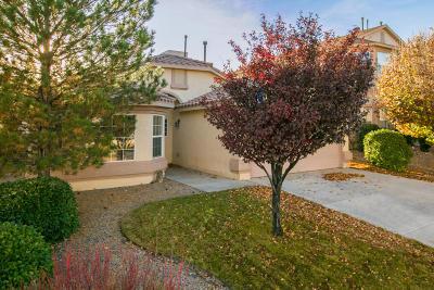 Rio Rancho Single Family Home For Sale: 690 Brook Meadows Drive NE