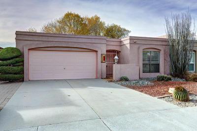 Albuquerque Single Family Home For Sale: 6305 Annapolis Drive NE