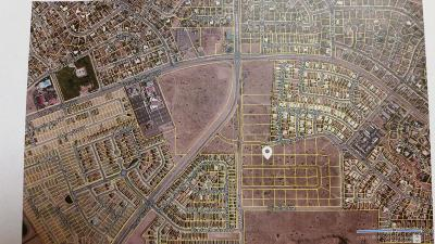 Albuquerque Residential Lots & Land For Sale: Zeidman Avenue NW