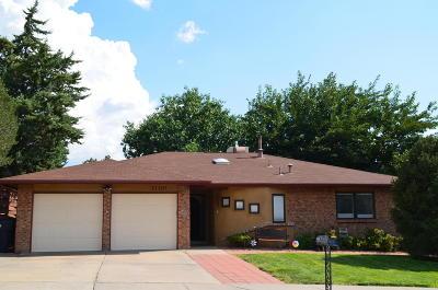 Single Family Home For Sale: 11104 Newcomb Avenue NE