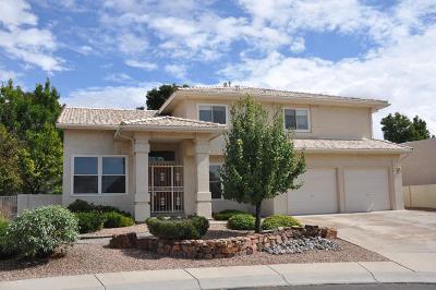Albuquerque Single Family Home For Sale: 5604 Chelton Court NE