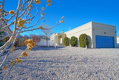 Rio Rancho Single Family Home For Sale: 501 Mindoro SE