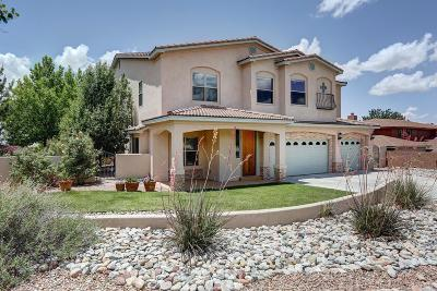 Bernalillo County Single Family Home For Sale: 1641 Soplo Road SE