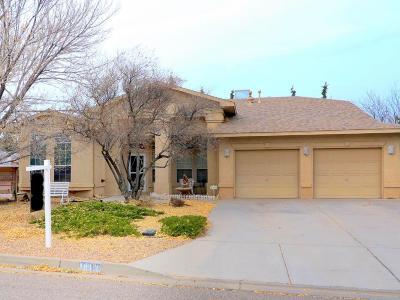 Rio Rancho Single Family Home For Sale: 1813 Platte River Road NE