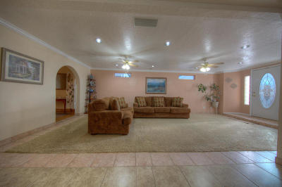 Albuquerque Single Family Home For Sale: 831 Delamar Drive NW